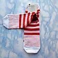Носки женские котики красная полоска размер 36-41, фото 3
