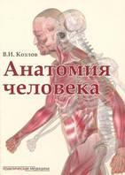 Козлов В.И. Анатомия человека. Учебник для медицинских вузов (брак)