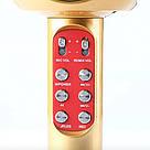 Беспроводной караоке микрофон WSTER WS-1816 золотой, фото 3