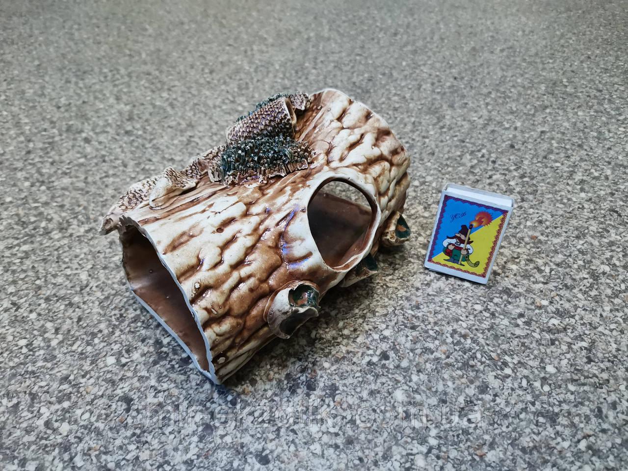 С170 Керамическая декорация для аквариума Полено среднее