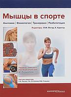 Йегер Й.М. Мышцы в спорте. Анатомия. Физиология.Тренировки. Реабилитация
