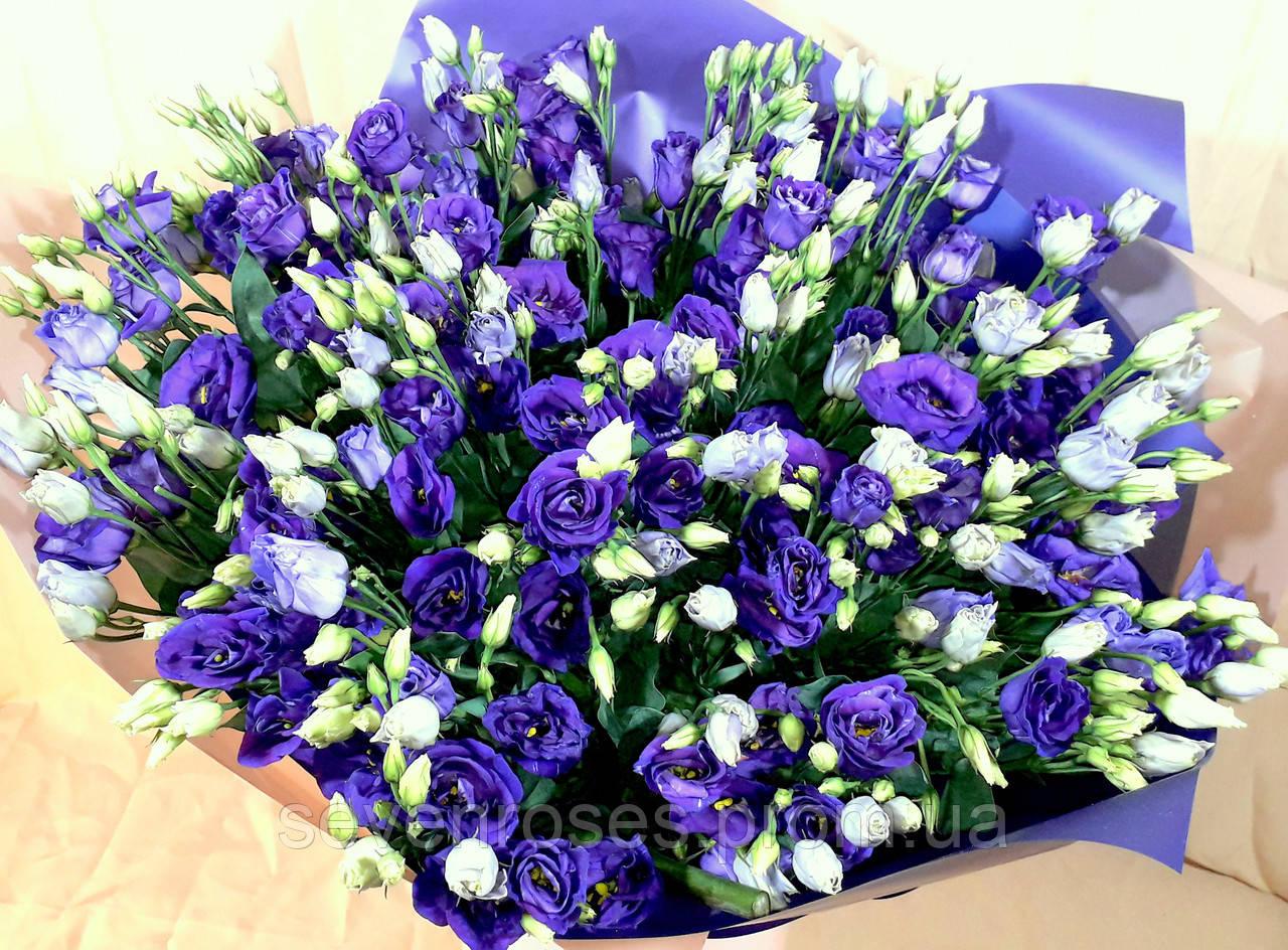 Букет из фиолетовой эустомы 29 шт.