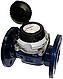 Водосчетчики SENSUS WP-Dynamic 150/50 промышленные Qn 450 для холодной воды с импульсным выходом (Словакия), фото 2