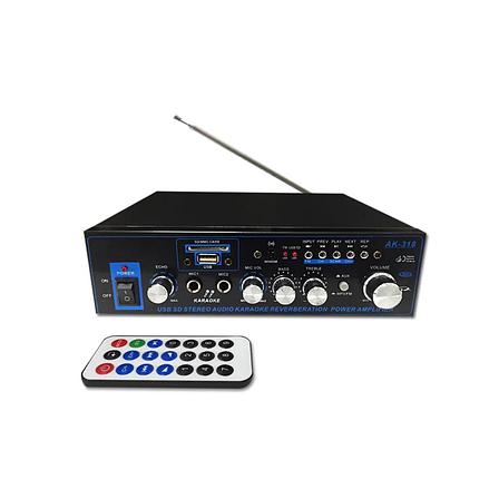 Усилитель универсальный AK-318 Hi-Fi, USB, SD, FM, 12 и 220 Вольт, усилитель для колонок, фото 2