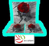 Набор квадратных тарелок  для суши ArcoFam 578
