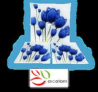 Набор квадратных тарелок  для суши ArcoFam 238
