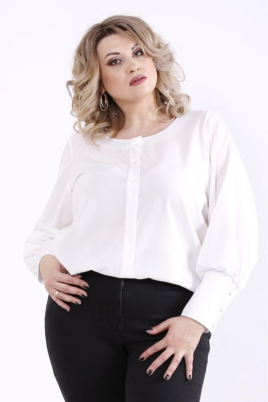 01350-2   Біла нарядна блузка великого розміру