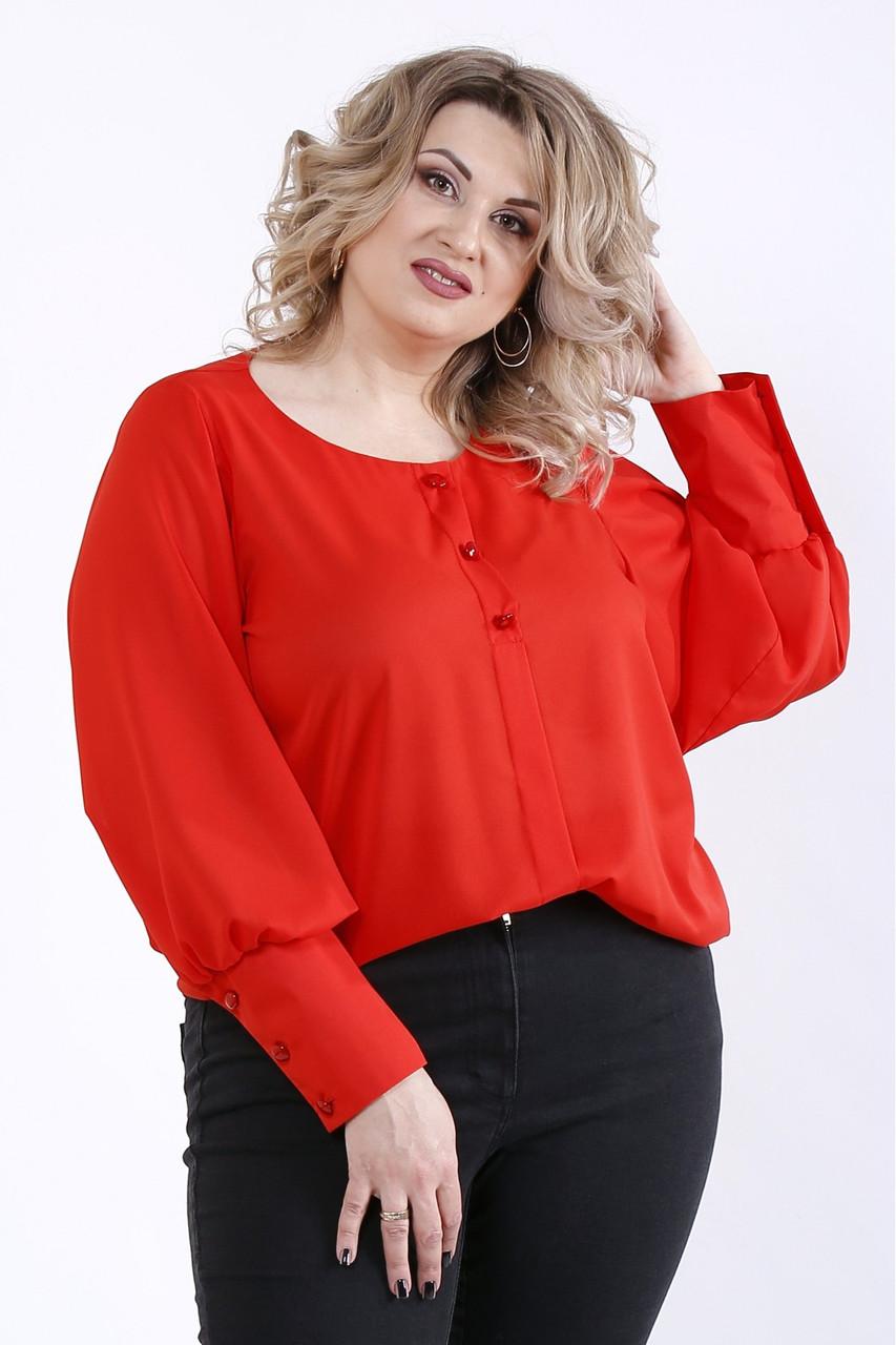 01350-3 | Червона блузка великого розміру