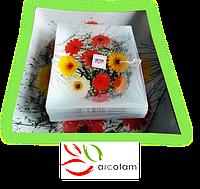 Набор квадратных тарелок  для суши ArcoFam 791