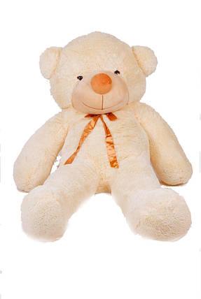 Мягкая игрушка медведь Тедди 180 см Кремовый (196-19112830), фото 2