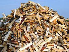 Выбор качественных дров для Булерьяна