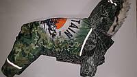 Комбинезон для собак Монтана S