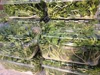 Лотки для упаковки микрозелени (микрогрин), фото 1