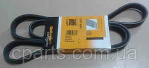 Ремень генератора Renault Symbol/Clio 2 с Г/У и А/С 1.4-1.6 8V (Contitech 5PK1750)(высокое качество)