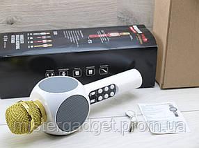 Беспроводной караоке микрофон Wster WS-1816, фото 2