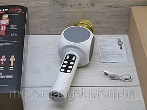 Беспроводной караоке микрофон Wster WS-1816, фото 3