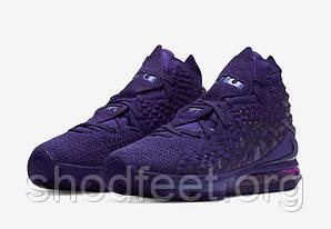 Баскетбольные кроссовки Nike Lebron 17 Bron 2K