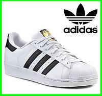 Кроссовки Adidas Superstar Белые Адидас Суперстар (размеры: 36,37,38,39,40,41) Видео Обзор
