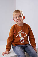 Детский свитшот Stimma Арийн 4488 на мальчика 4-7 лет 116 Кемел