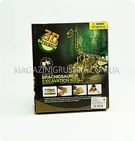 Набор юного археолога - Раскопки брахиозавра, фото 2