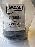 Пыльник шруса наружный на MB Vito 638 / Renault Master II / Fiat Ducato 94--06 (R15) Pascal(Польша) G5R022PC, фото 4