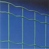 Сетка рулонная сварная Pantanet Family H=152см, L=25м, фото 2