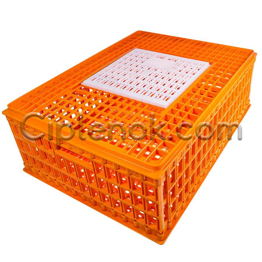 Маленький ящик для перевозки птицы с раздвижной верхней дверкой 75x55x27
