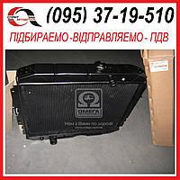 Радиатор ГАЗ-3307 водяного  охлаждения (3-х рядный) медный  3307-1301010