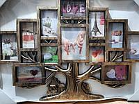Фоторамка коллаж дерево