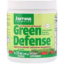 """Суперфуд зеленая пища Jarrow Formulas """"Green Defense Powder"""" в порошке (180 г)"""