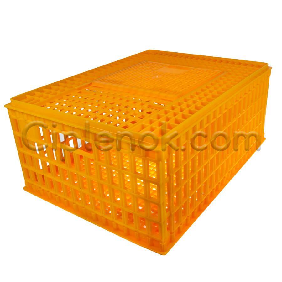 Маленький ящик для перевозки птицы с раздвижной верхней дверкой 75x55x33