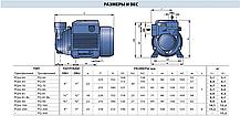 Насос вихревой самовсасывающий Pedrollo модель PQm 81-Bs (однофазный), фото 2