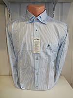 Рубашка мужская SHAFT, длинный рукав, узкая полоса 002 \ купить рубашку