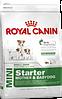 Royal Canin Mini Starter 3 кг