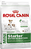 Royal Canin Mini Starter 8.5 кг