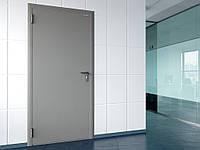 Двери DoorHan технические одностворчатые глухие DTG/980/2050/7035/R/N