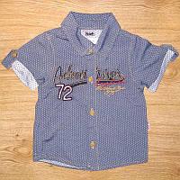 Рубашка детская РД-5574 (80-86)