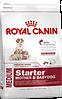 Royal Canin Medium starter 12 кг