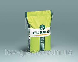Семена кукурузы Euralis ЕС Сириус  ФАО 200