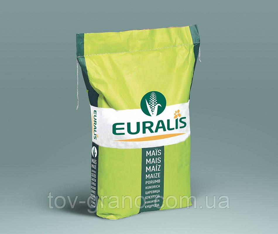 Семена кукурузы Euralis ЕС Кроссман ФАО 240