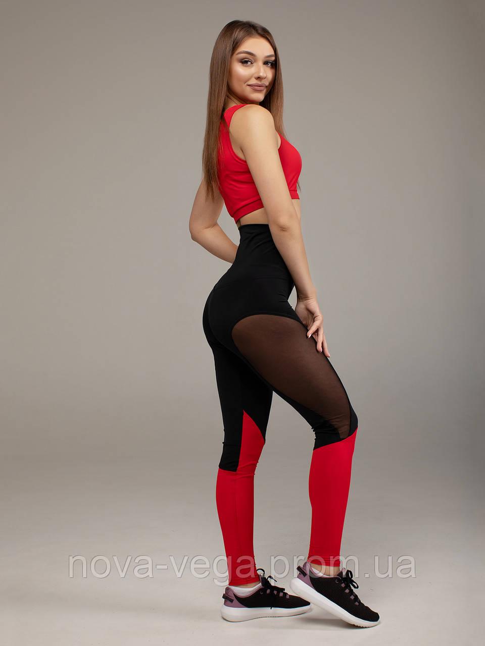 Спортивные Женские Лосины Nova Vega Cotis