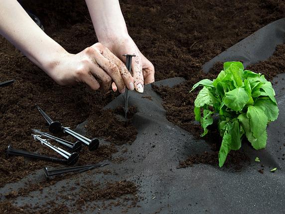 Колышек садовый для крепления агроволокна, фото 2