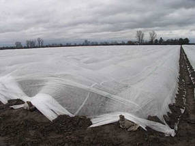 Агроволокно на метраж 23 белый 4,2 м, фото 3