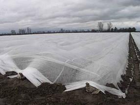 Агроволокно на метраж 23 белый 6,35 м Усиленный край, фото 3