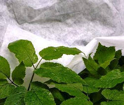 Агроволокно на метраж 30 белый 1,6 м, фото 2