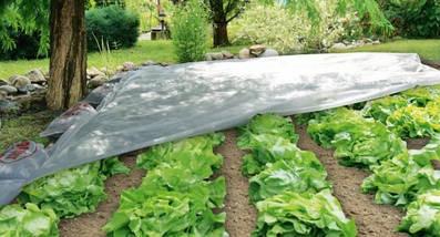 Агроволокно на метраж 30 белый 4,2 м, фото 3