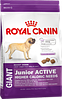Royal Canin Giant Junior Active 15 кг