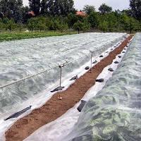 Агроволокно белое 17  плотности  3,2м * 100м, фото 3
