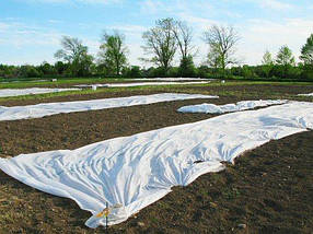 Агроволокно на метраж 40 белый 6,35 м, фото 2