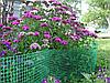 Садова сітка 1 м х 100 м (осередок 12мм*14мм), фото 2